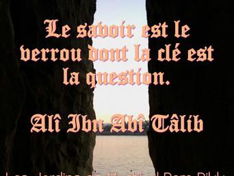 Ali ibn Abî Tâlib : Sur l'éducation..