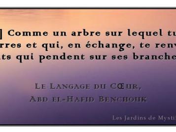 Abd el-Hafîd Benchouk : [Être] Comme un arbre sur lequel tu jettes des pierres