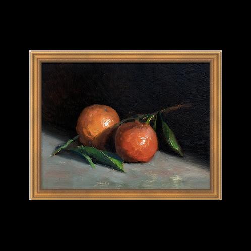 Still Life - Oranges