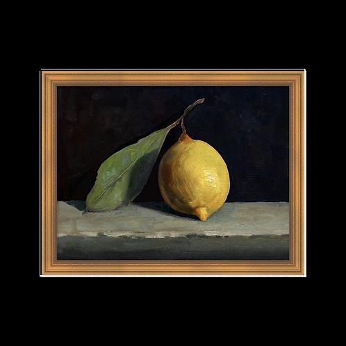 Still Life - Citron