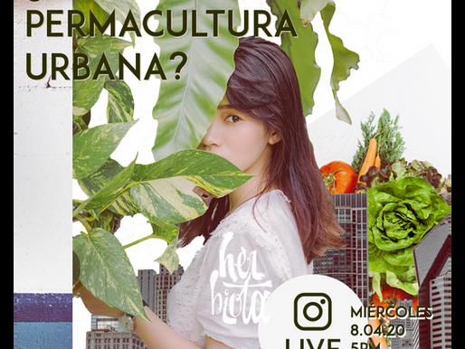 Live Introducción a la Permacultura Urbana 08.04.2020