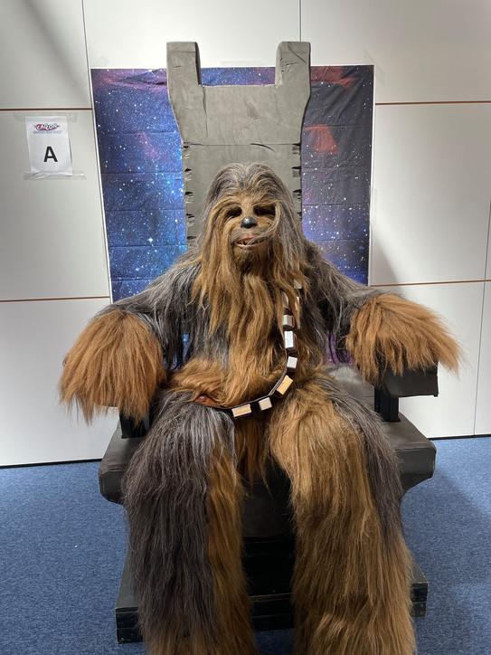 Resting Wookie