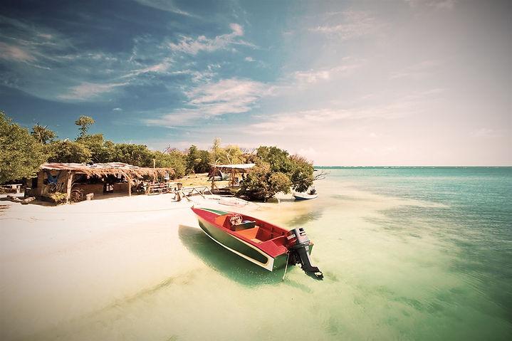 Grenada-Hog-Island-Large_edited.jpg