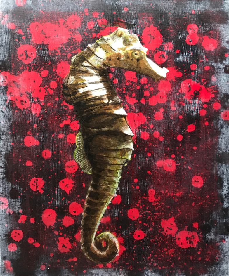 Seahorse by Kane