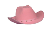 cowboyhat copy.png