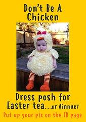 7. Posh Dress-up.jpg