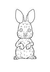 3. Where Rabbit.jpg