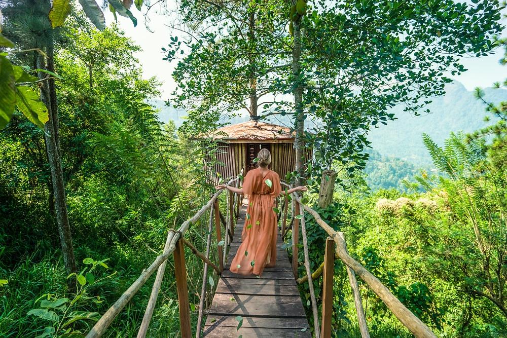 Tree-House-Sri-Lanka-Wearing-Golden-One-Clothing