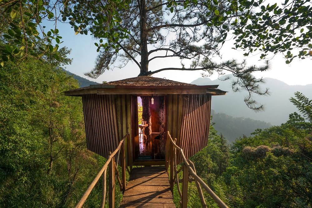 Tree House Sri Lanka