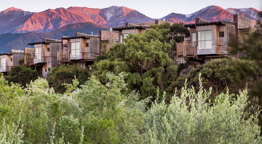 Hapuku Lodge Romantic Tree House New Zealand