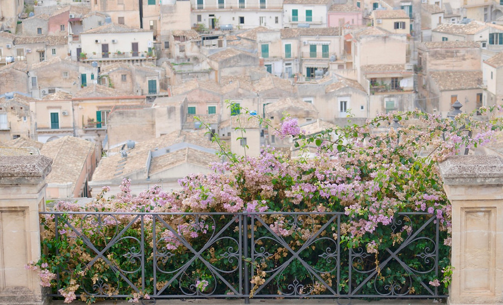 Noto, Sicily Pink flowers Italy