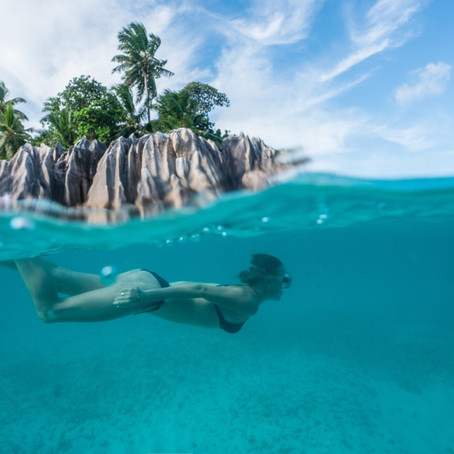 Guide to the Seychelles
