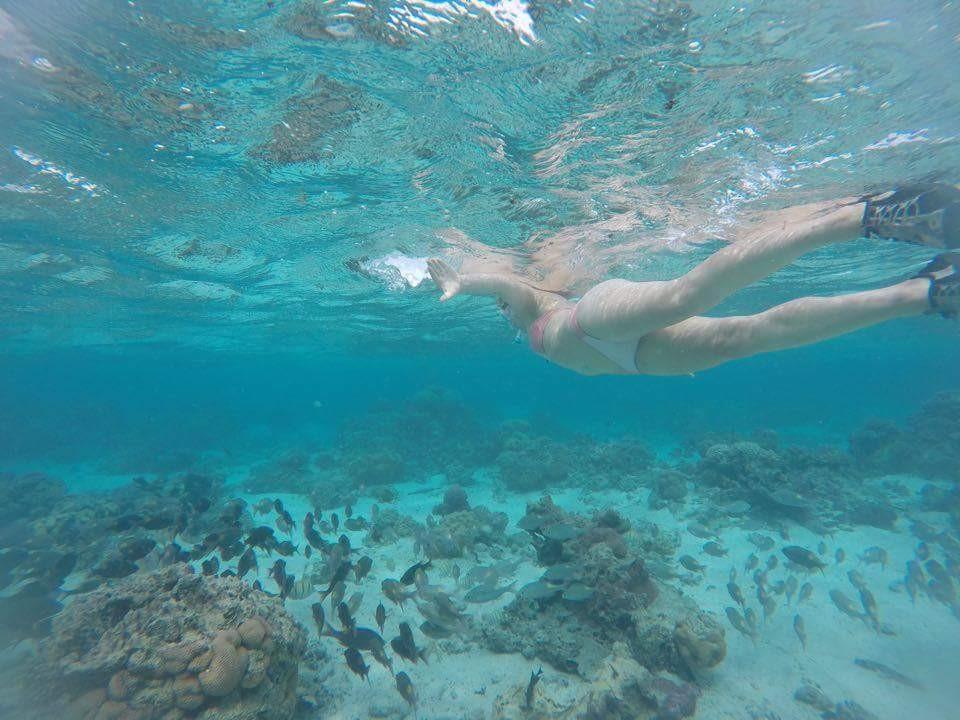 Snorkelling in Rarotonga