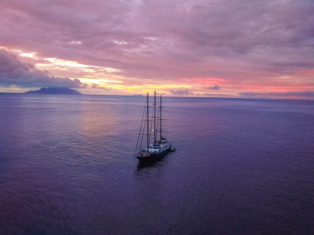 Sea Star yacht Silhouette Cruises