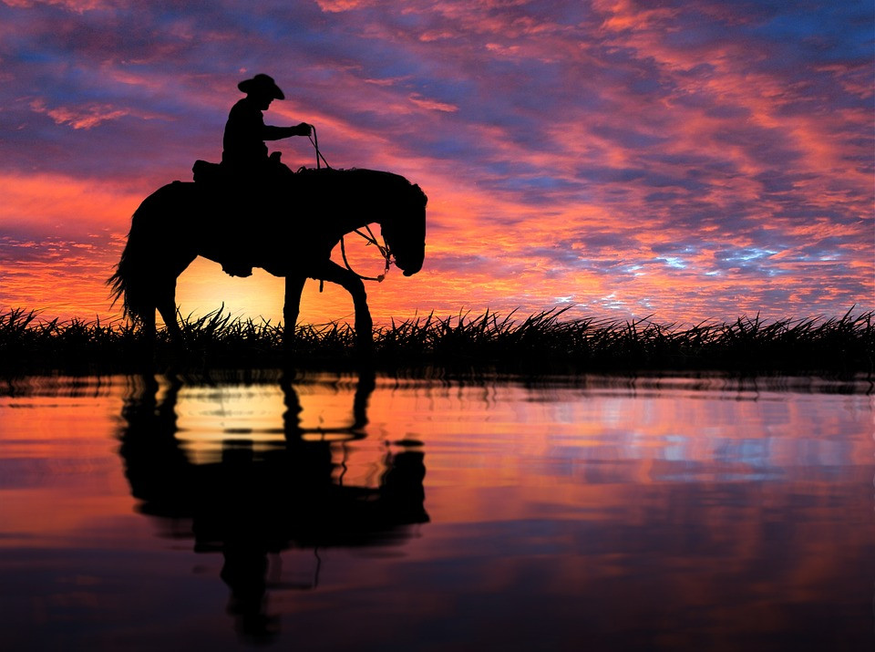 Sunset/Steed/Pixabay