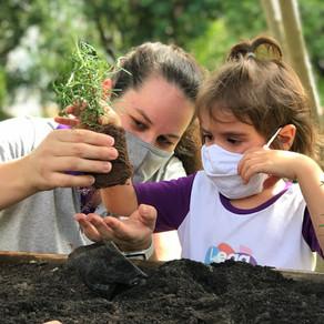 Conexão da criança com o Meio Ambiente.