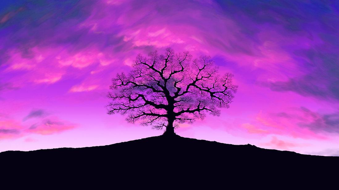 LMT Illustration tree with purple sky