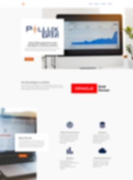 PolluxData Website Design