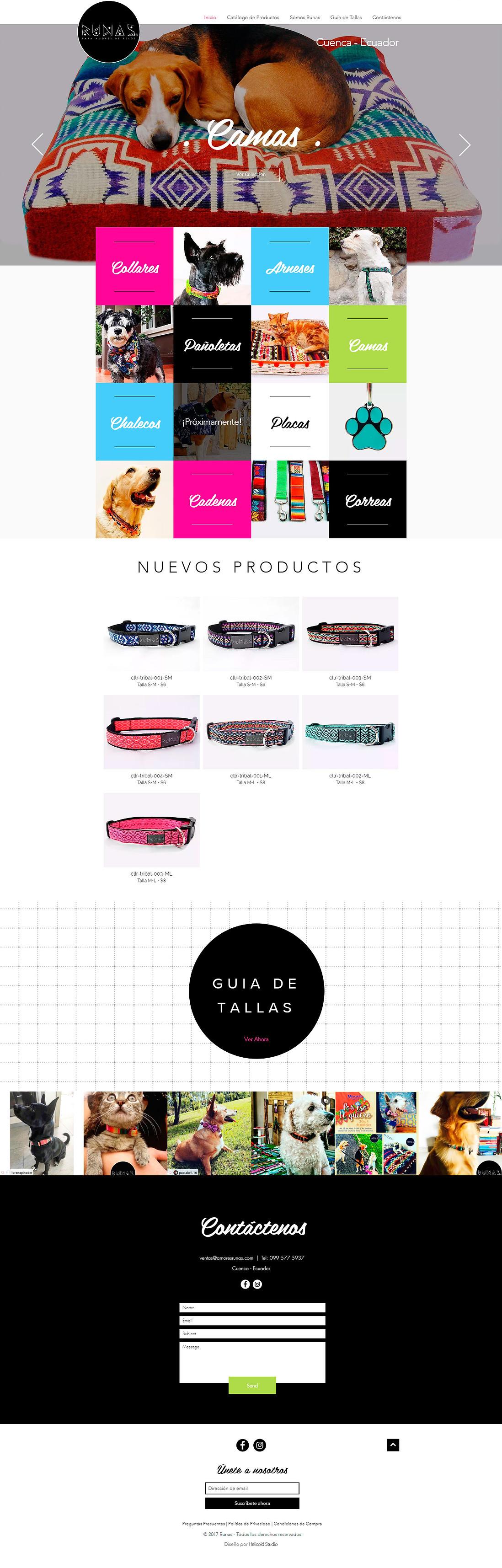 RUNAS Website Design Home Page