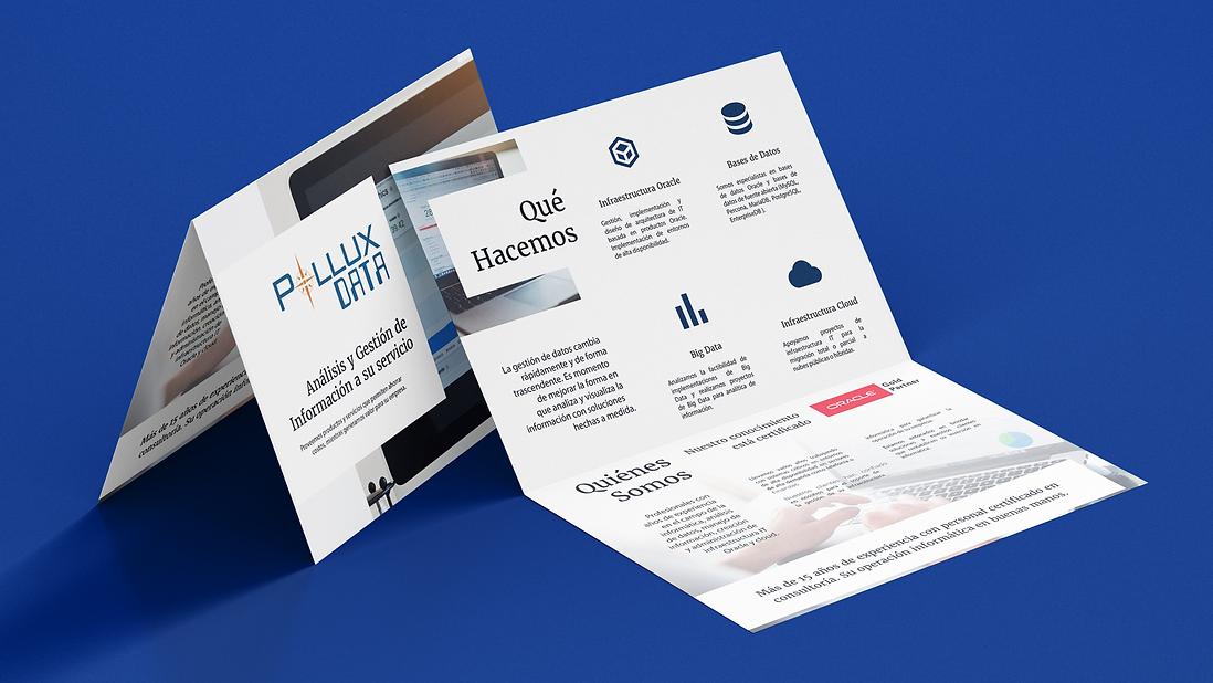 PolluxData Brochure Design