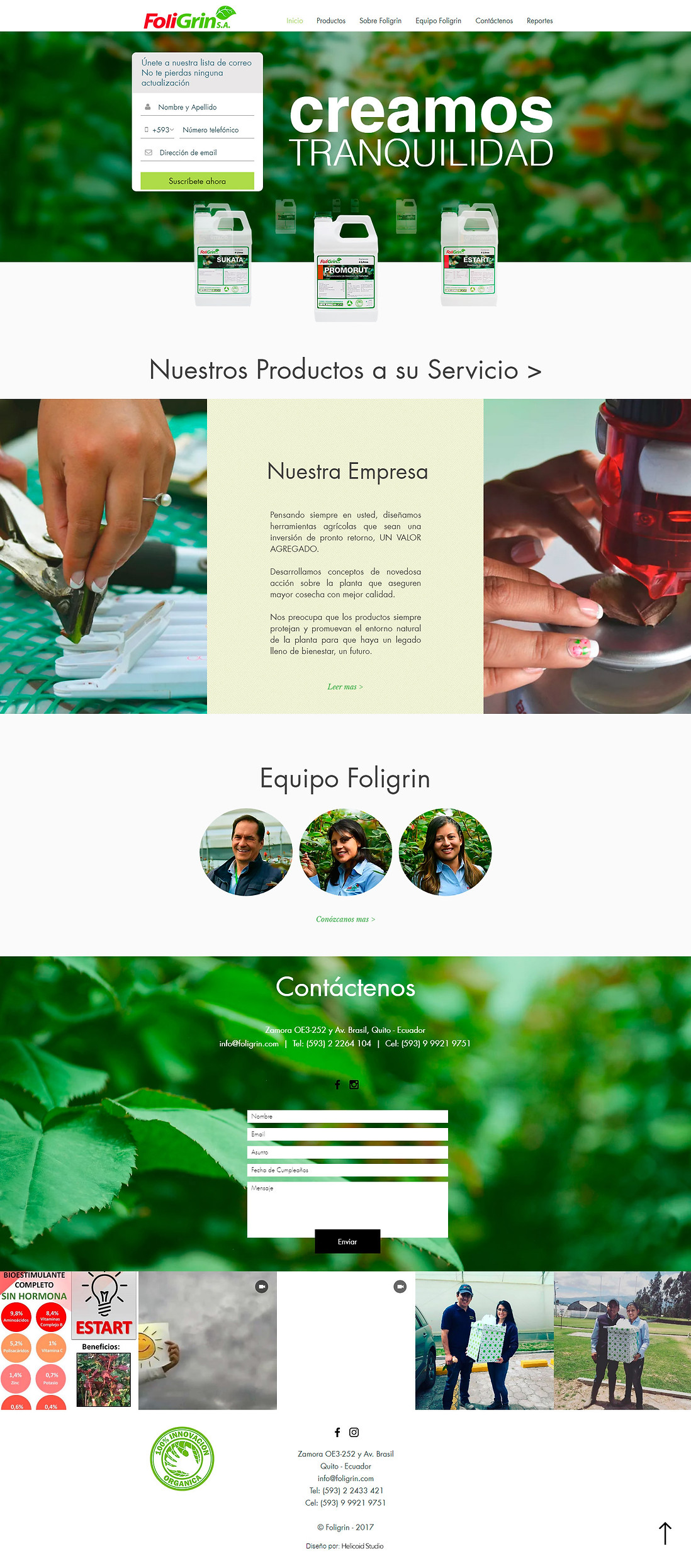 Foligrin S.A. Website Design