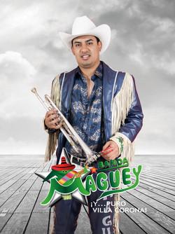 Trompeta -  Mario Prado