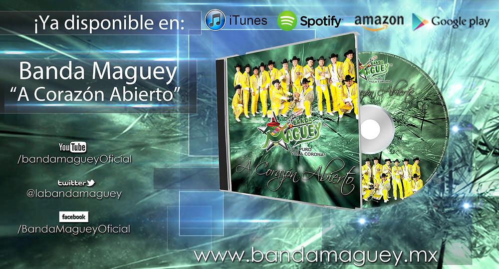 Maguey disco tiendas online