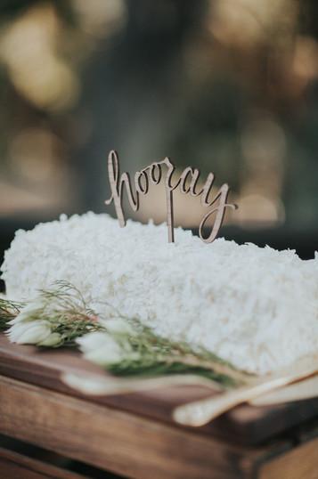 062116_C+T Carmel Wedding_Buena Lane Photography_5492.jpg