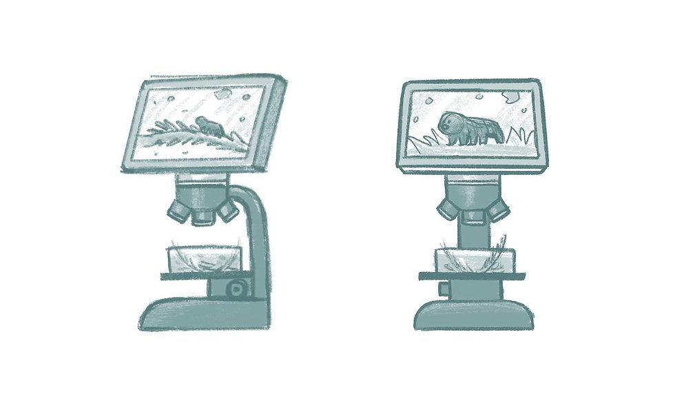 e&m_waterbear_visdev_microscope.jpg