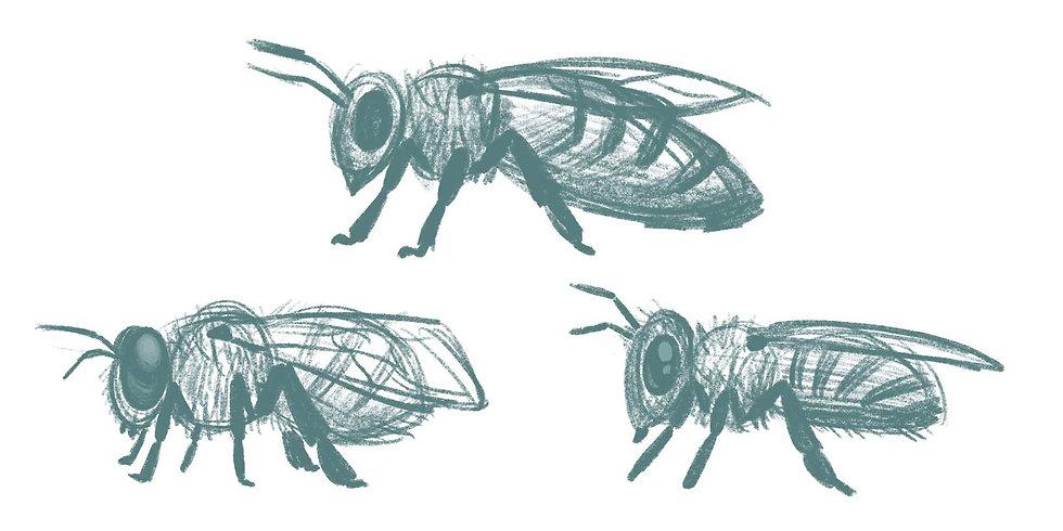 E&M2_Character_Real Bees.jpg
