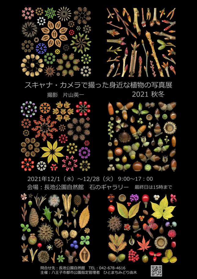 スキャナ写真展-片山2021.JPG