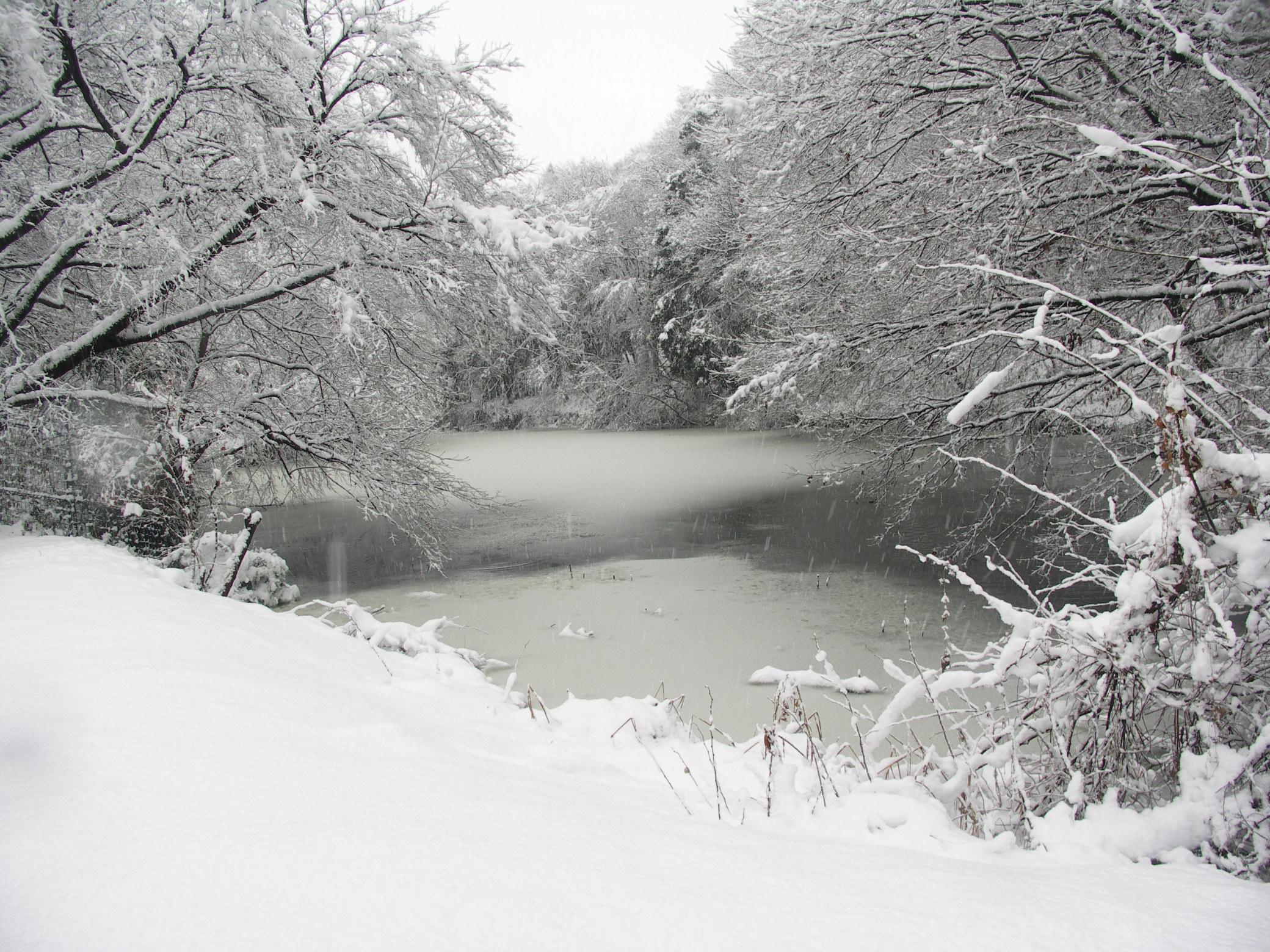 雪景色130114長池公園 (9)