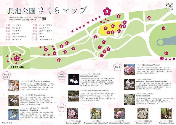 桜MAP2020.jpg