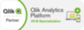 Qlik partner qlik analytics platform specializatio