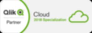 Qlik partner Cloud specialization