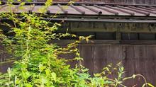 空き家の被害とその活用法