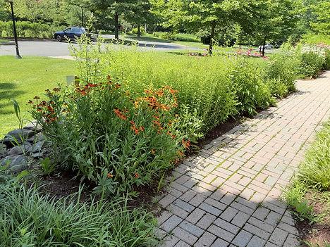 KT garden photo2.jpg