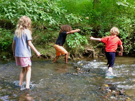 Nature-based summer camp offers kids hands-on exploration and learning adventures