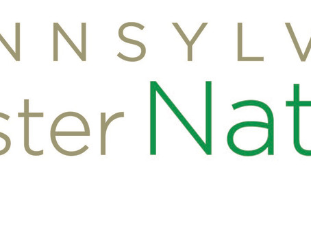Certification program to train Pennsylvanians as nature's stewards recruits participants in Southern