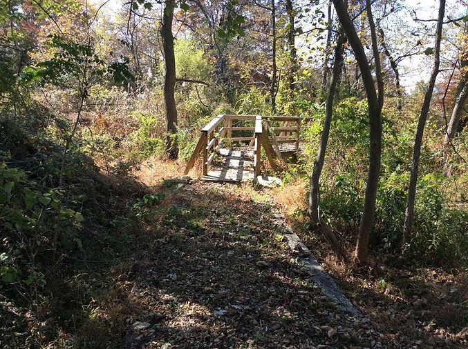 32.footbridge crossing stream.jpg