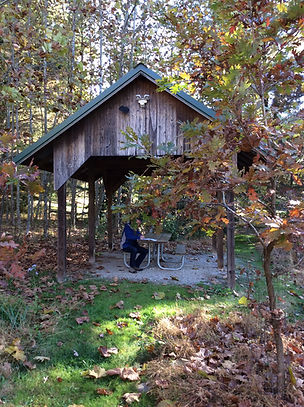 83.shelter with picnic table.jpg