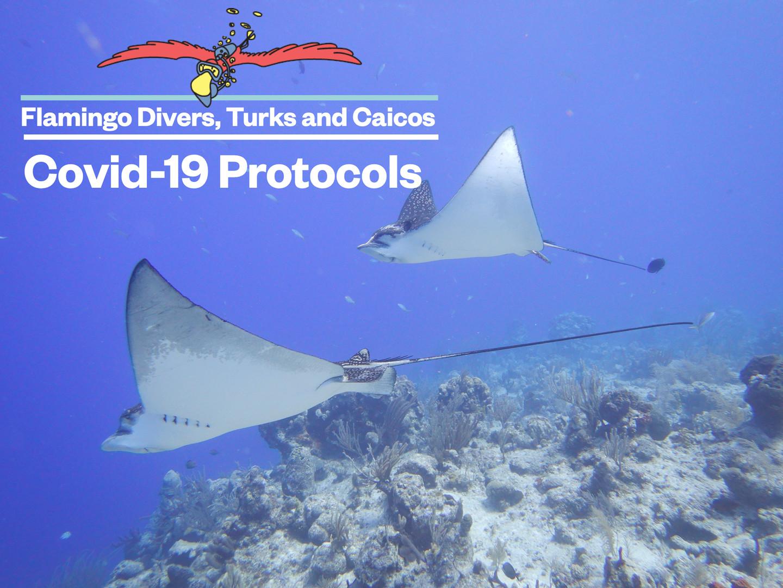 FD Covid Protocol page 1/8