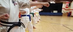 White Heron Martial Arts
