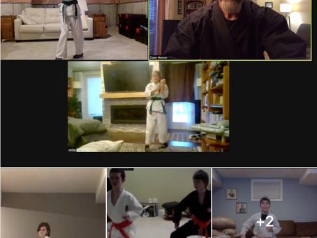 On-line Karate Grading