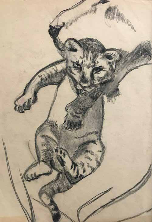 Leopi-Nicola-Artist-Sketches89.jpg
