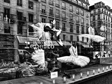 Latent Fairies (Paris, 2010)