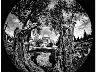Sons of Abraham (Jerusalem,1967)