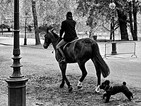 Chased Equestrian (London,1972)
