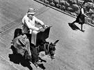 Where Mules Negotiate (Jerusalem,1971)