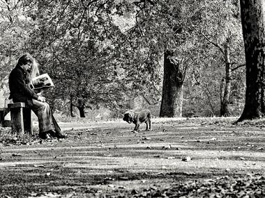 Autumn Trail (London,1972)